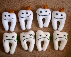 Da čika zuba zeku